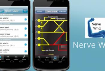 Nerve-Whiz-705x350