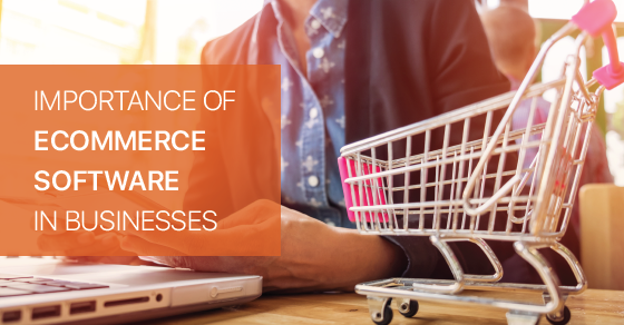 Ecommerce Software In Businesses